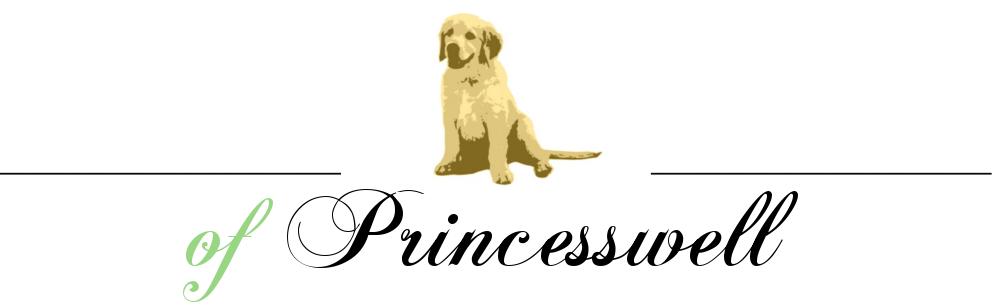 Logo der Of Princesswell Zucht